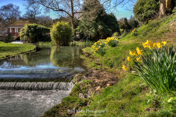 Russell gardens - Waterfall And Spring Time