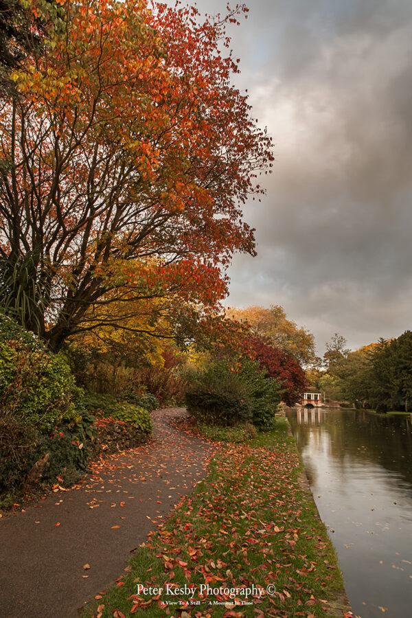Russell Gardens - Autumn #1