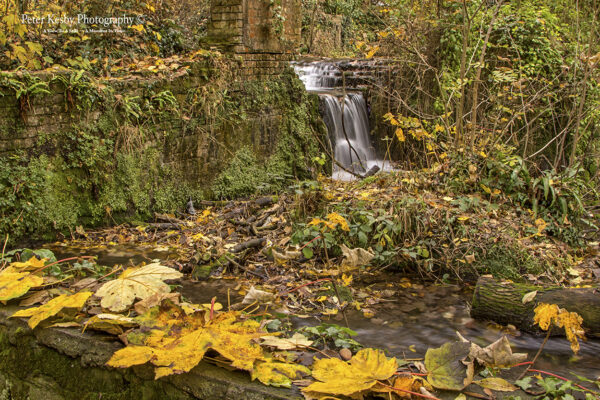 Kearsney Abbey - An Autumn Waterfall #2