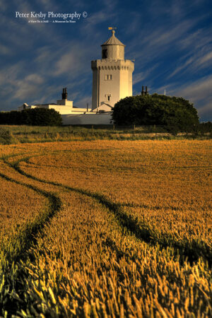 South Foreland Lighthouse - Wheat Field