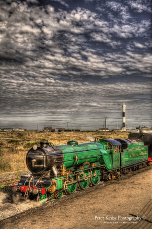 Southern maid At Dungeness