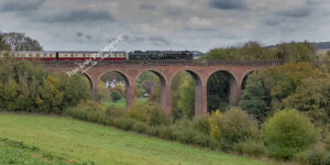 Iron Duke - Golden Arrow -Eynsford Viaduct