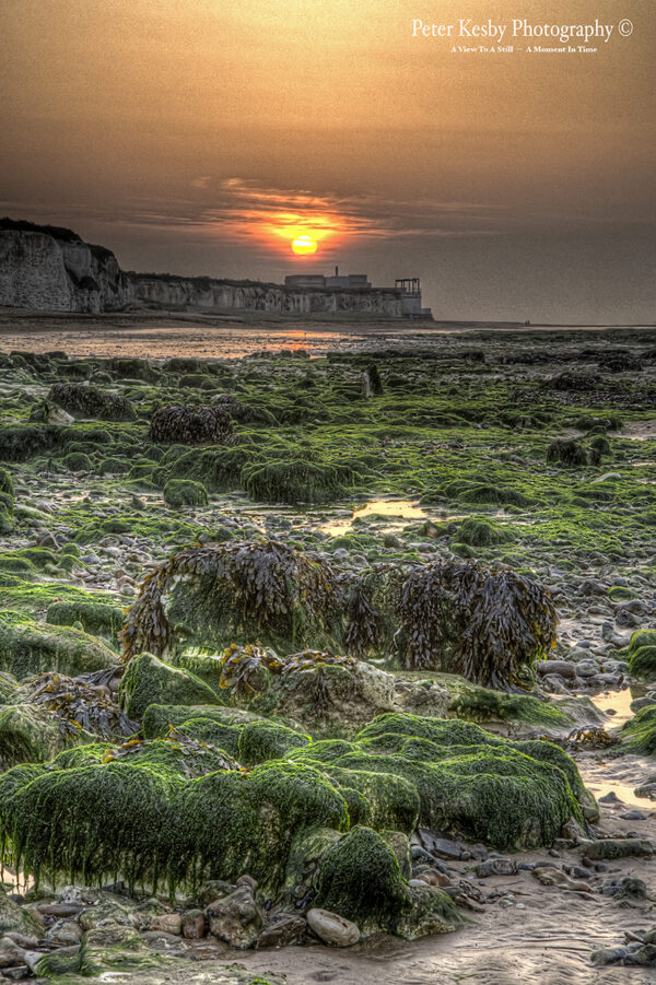 Botany Bay - Low Tide - Sunset