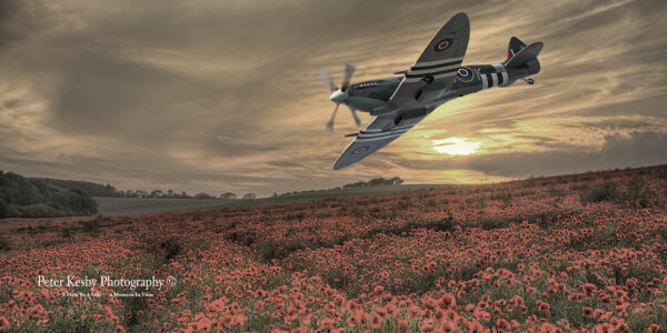 Composite - Spitfire Over Poppy Field