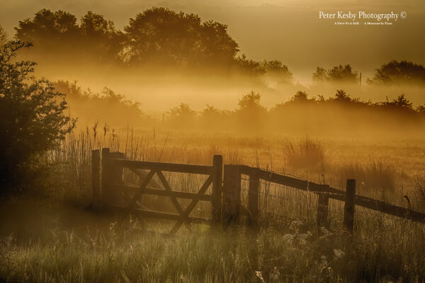 Grove Ferry - Sunrise