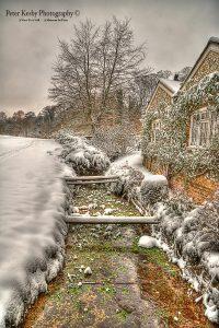 AC019 Bushy Ruff Stream Snow