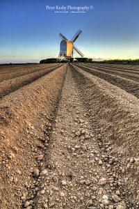 AP013 chillenden windmill furrows portrait