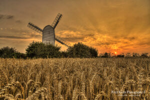 AP018 chillenden windmill with corn field